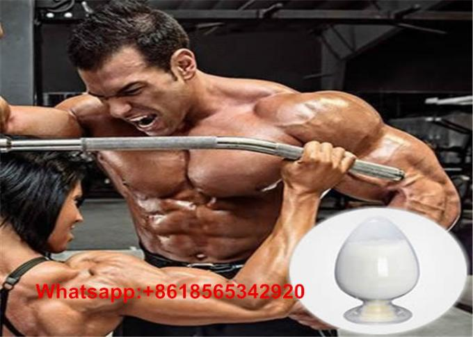 Nolvadex for sale bodybuilding routines