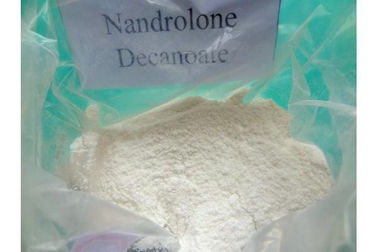 Cina Health Enhancer Nandrolone Bodybuilding, Natural Anabolic Steroid C21H30O3 Distributor